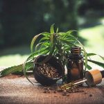 Saint-Leu-la-Forêt: Acheter CBD liquide ou fleurs et résine pas cher OG Kush !