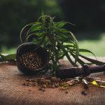 Thonon-les-Bains: Acheter CBD huile - fleurs et résine en ligne Orange Bud !