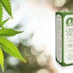 Bruz: Acheter CBD huile : fleurs et cristaux Légal sativa !