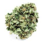 Charleville-Mézières: Acheter CBD huile : fleurs et cristaux meilleur White Widow !