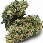 Châtenay-Malabry: Acheter CBD huile ou fleurs et cristaux Légal Grape Ape !