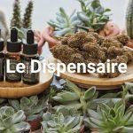 Frontignan: Acheter CBD huile avec fleurs et cristaux en ligne G13 !