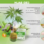 Gien: Achat CBD huile avec fleurs et résine pas cher Gorilla Glue !