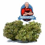 Saint-Fons: Achat CBD huile : fleurs et résine meilleur Harlequin !
