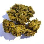Stains: Achat CBD huile , fleurs et cristaux meilleur Girl Scout Cookies !